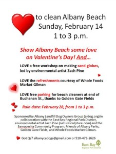 Feb 14 2016 Albany Beach cleanup flyer final